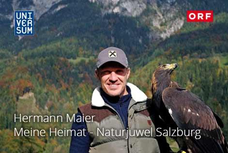 hermann_maier_universum_salzburgh