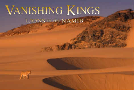 vanishingkings2